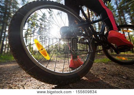 Woman Riding A Mountain Bicycle