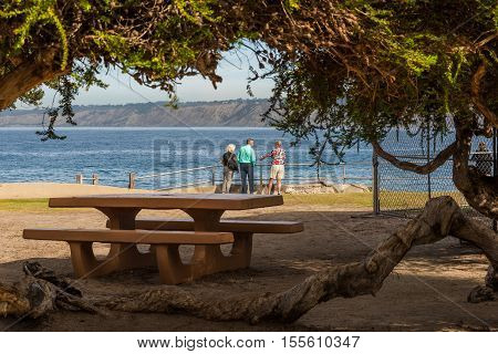 La Jolla, USA - December 7, 2015: Famous sea lion cove with people standing by picnic area
