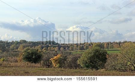 Landscape in fall colors in in a rural area in the north of Berlin the German capital.
