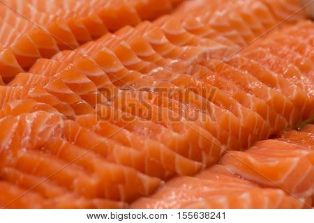 close up sliced fresh salmon sushi (Salmon sashimi)