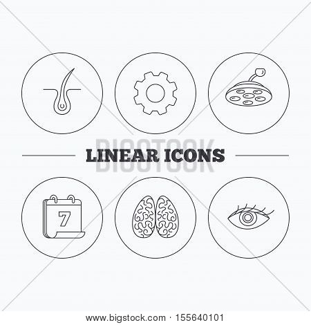 Eye, neurology brain and surgical lamp icons. Trichology linear sign. Flat cogwheel and calendar symbols. Linear icons in circle buttons. Vector