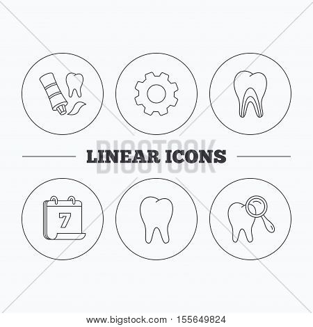 Tooth, dental diagnostics and toothpaste icons. Dentinal tubules linear sign. Flat cogwheel and calendar symbols. Linear icons in circle buttons. Vector