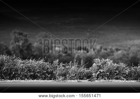 Black and white mountain road with grass border background hd