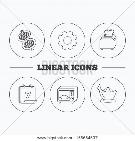 Microwave oven, toaster and juicer icons. Waffle-iron linear sign. Flat cogwheel and calendar symbols. Linear icons in circle buttons. Vector