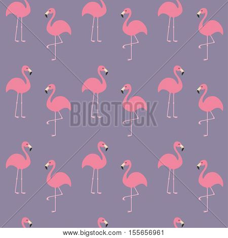 Flamingo set. Seamless Pattern Exotic tropical bird. Zoo animal collection. Cute cartoon character. Decoration element. Violet background. Flat design. Vector illustration.