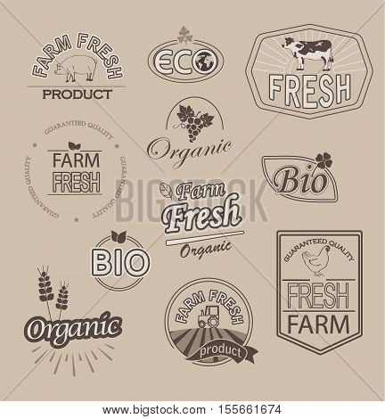 Set of badges and labels elements for organic fnd farm fresh food, vector.