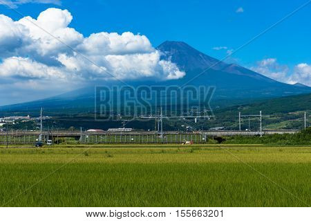 Japanese Farm Landscape Of Rice Field With Mt Fuji