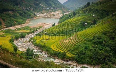 Sapa rice field, rice terraces, Sapa valley, rice field on terraces in Sapa, Vietnam. Harvest season. Vietnam landscape.