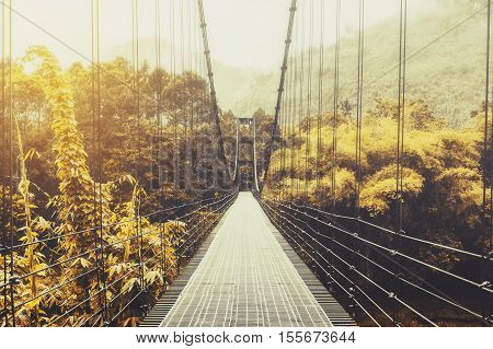 Beautiful autumn seasonal forest and sunlight, with steel suspension bridge, vintage tone