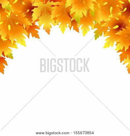 Vector background with red orange brown and yellow falling autumn leaves. Fall maple leaves on white background. Blank space for your text. Poster card label banner vector design.