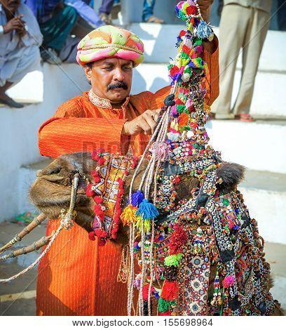 Rajasthani Indian Man Decorates His Camel At Pushkar Fair, India.