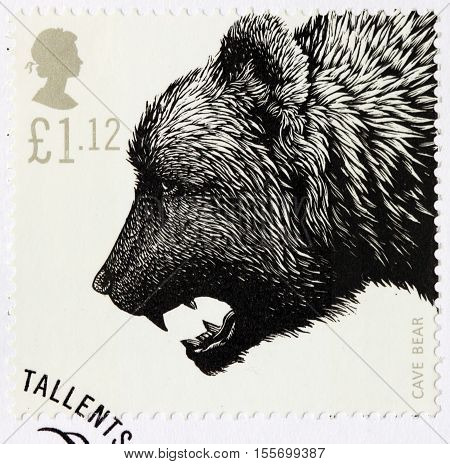 LUGA RUSSIA - NOVEMBER 6 2016: A stamp printed by GREAT BRITAIN shows Cave Bear - Ice Age Animal circa 2006