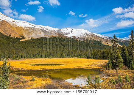 The concept of ecotourism. The mountains are covered in snow. Autumn in Canada. Shallow marshy lake in the Rocky Mountains