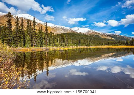 The concept of active tourism and ecotourism. Shallow lakes surrounded by pine forest. Rocky Mountains on a sunny autumn day