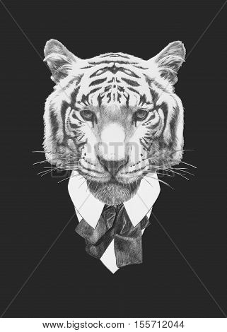 Portrait of Tiger in suit. Hand drawn illustration.