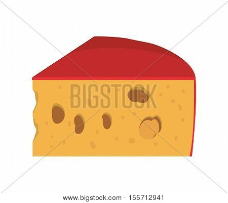 full color with cheese edam vector illustration