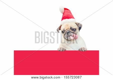 Merry Christmas and Happy New Year 2017 Postcard with Pug dog in Santa Claus hat stand above banner board with copy space for label text