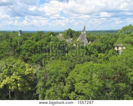 View Over The Old Maya Ruins And The Peten Jungle, Tikal, Guatemala