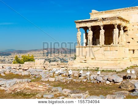 Banner background with Acropolis, porch of caryatids, Erechtheum Temple in Athens, Greece and blue sky