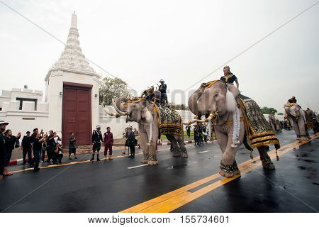 BANGKOK,THAILAND-NOVEMBER 8,2016 : Eleven Elephants to look like white prostrate ,ascribe unto lamented. His Majesty the late King Bhumibol Adulyadej at the front of the Royal Palace in Bangkok capital city,Middle of Thailand.