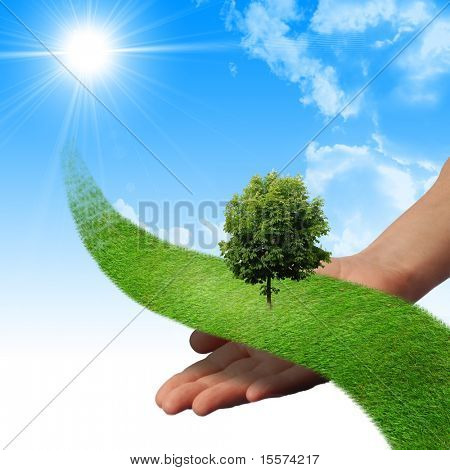 Hand, the line of grass, trees against the blue sky. Symbol of environmental protection poster