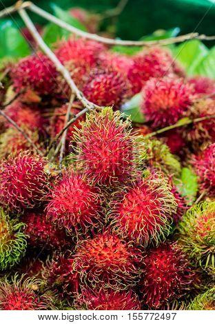 fresh rambutan from the farm. Thai fruit