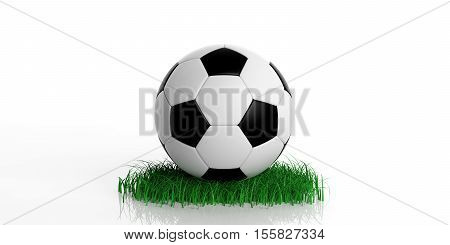 3D Rendering Soccer Ball And Grass