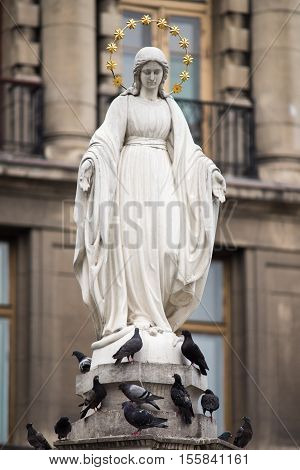 Statue of Virgin Mary and pigeons in Lviv