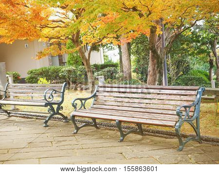 Vintage filter of wooden bench in the park in autumn season Nagasaki Japan