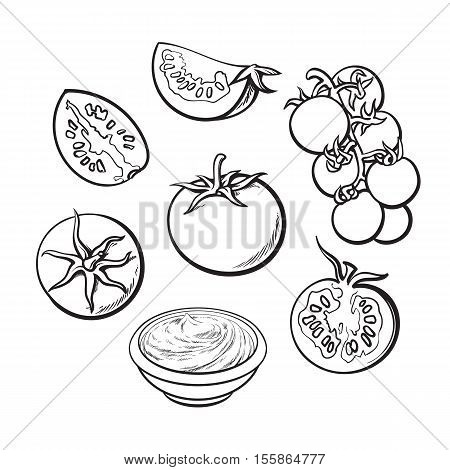 Set of sketch style vector illustrations of ripe tomatoes isolated on white background. Whole, half and quarter tomato, top and side view, bunch of cherry tomatoes, bowl of tomato sauce