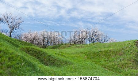 Welcome to serenity - spring landscape in hilly rural area, Ukraine.