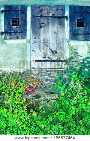 Original vintage wooden door in an old house. In the foreground flowers and grass.