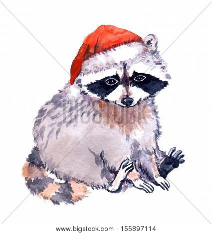 Cute raccoon animal in red xmas santa's hat. Christmas Watercolor