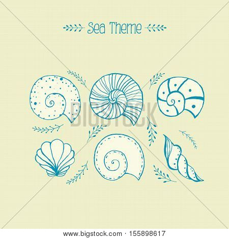 Set of hand drawn sketches sea shells and ammonites. illustrations isolated objects