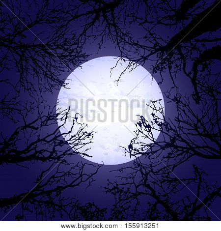 Background with black tree silhouettes and big moon