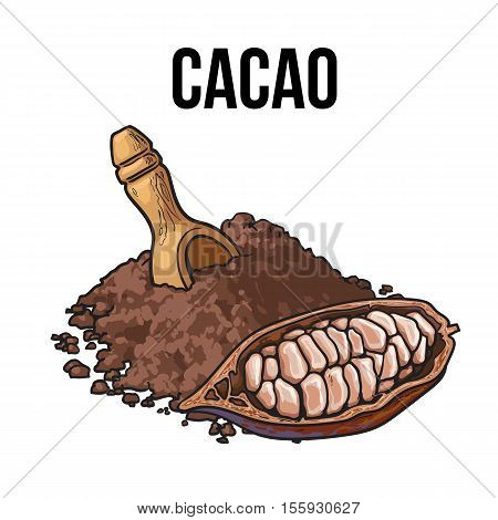 Hand drawn pile of cocoa powder with Half of ripe cacao fruit, sketch style vector illustration isolated on white background. Colorful illustration of ground cacao bean, cocoa powder