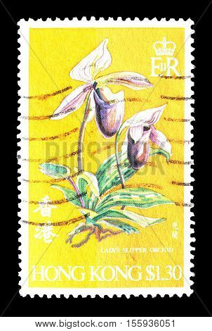 HONG KONG - CIRCA 1977 : Cancelled postage stamp printed by Hong Kong, that shows Orchid.