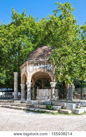 Greece Dodecanese Kos the Hippocrates tree and the lavatory of the Adid Hasaan mosque