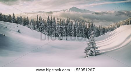 snovy mountain in winter time, toned like instagram filter