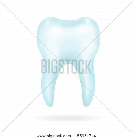 Tooth on a white background. isolated dental illustration