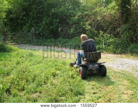 Ride On Mower In Action