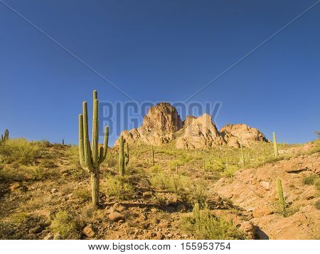 Scenic views of the Southwest United States