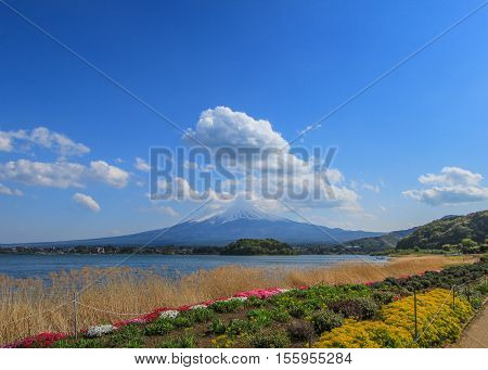 Stunning scene of Fujisan, Japan during summer period