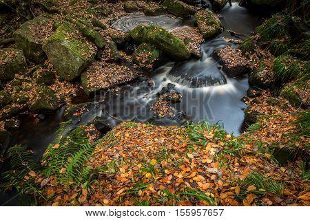 Autumn in Padley Gorge, Peak District, Derbyshire, England