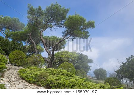 Summit of Mount Solaro Capri Italy Partially Cover in Cloud poster