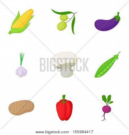 Healthy vegetables icons set. Cartoon illustration of 9 healthy vegetables vector icons for web