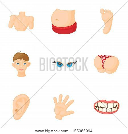 Human body icons set. Cartoon illustration of 9 human body vector icons for web