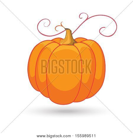 Thanksgiving pumpkin isolated on white background. Pumpkin icon. Vector illustration. Hand Drawn.