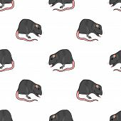 Domestic Rats Isolated on White Background. Rodent Seamless Pattern poster