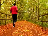 Sportsman in pink and black sportswear run on road. The man is slowly running on asphalt way covered by autumn leaves. Pathway in park beeches and maples leaves on the ground. poster